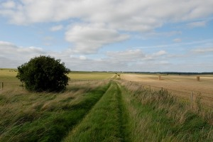 The Path heading back towards Amesbury,Stonehenge behind us.