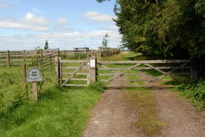 The Kings Barrow Area Gate