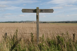 The Cursus Signpost